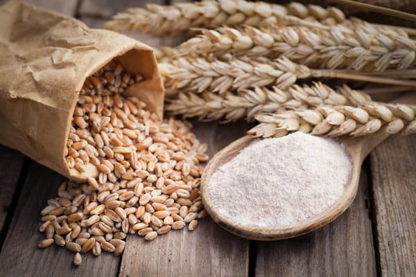 ピュリナワンに穀物が入っている理由