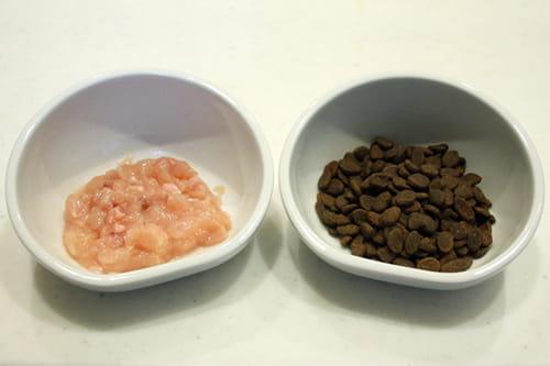 猫に生肉を与えるときの食事量