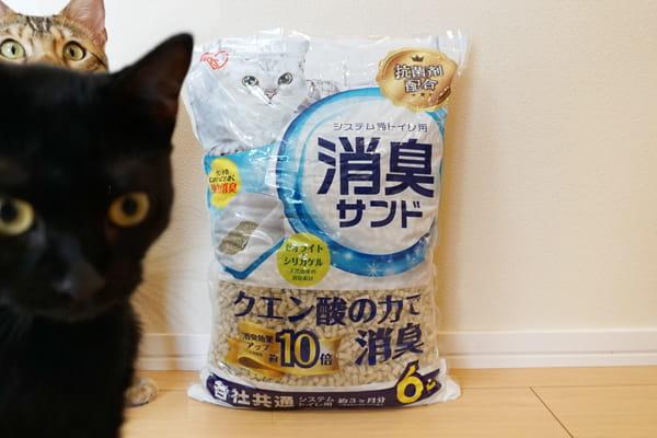 猫のシステムトイレのトイレ砂レビューまとめ