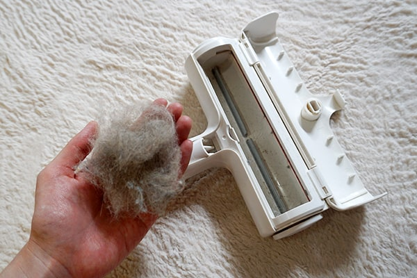 猫トイレや猫の毛に役立つ掃除用品
